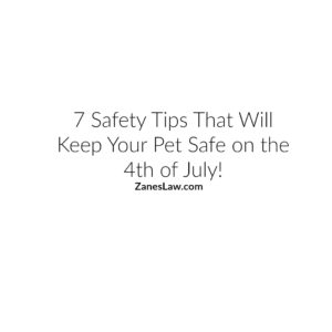 Pet Safety On The Fourth of July